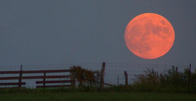 La luna fresita