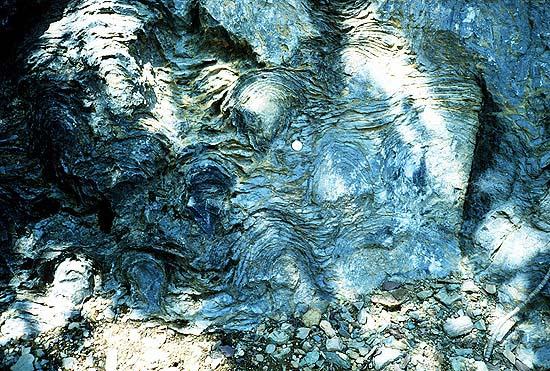 Foto de estromatolites
