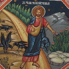 Lecturas del Domingo: Julio 16, 2017 – El sembrador, las semillas y la tierra
