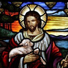 Lecturas del Domingo: 7 de Mayo de 2017 – Domingo del Buen Pastor