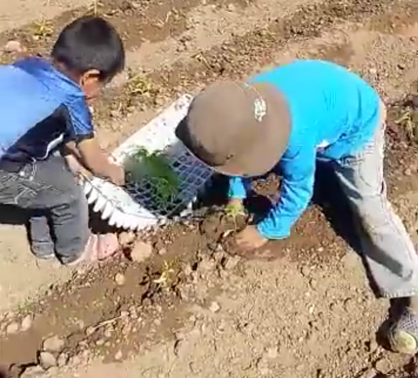 Niños en Buenavista, Mexico