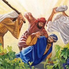 Lecturas del Domingo: Octubre 8, 2017 – Las enseñanzas de la viña