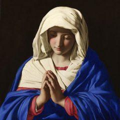 La Primera Oveja de Jesús